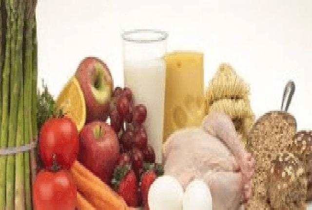 insanın besin ihtiyacı